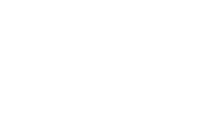 Culture. Diversity. Equity. Transformation.